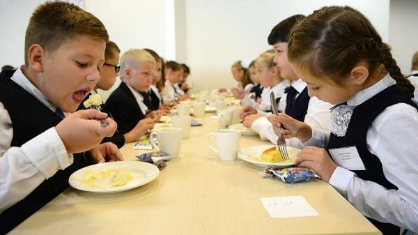 Бесплатное питание в школе в 2020 учебном году: кому положено и правила его оформления